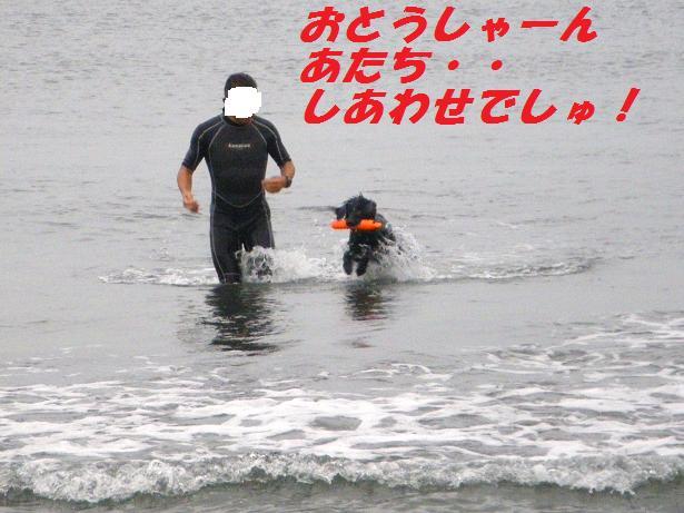 a0104464_1150664.jpg