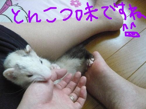 c0165472_1885389.jpg