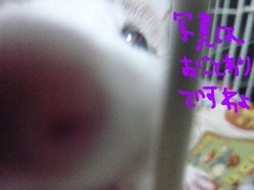 c0165472_18203826.jpg