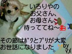 c0090535_7334636.jpg