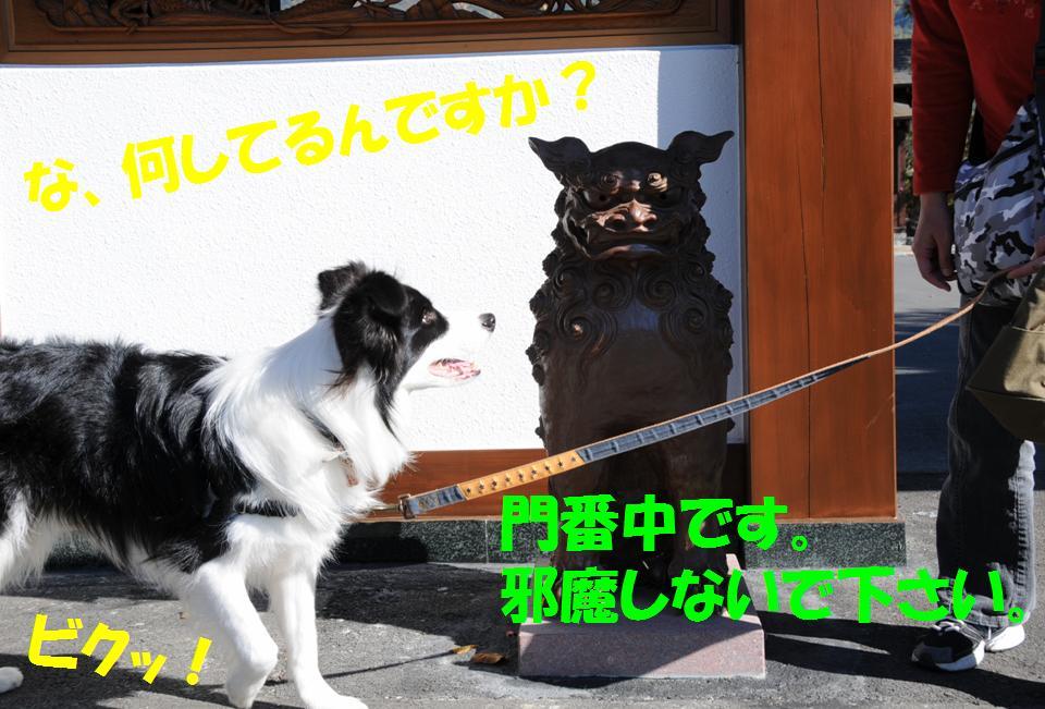 c0147241_23231198.jpg