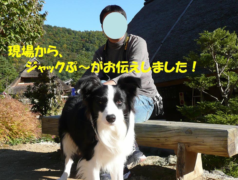 c0147241_1450835.jpg