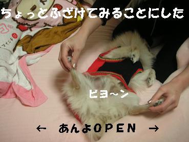c0179136_22514332.jpg