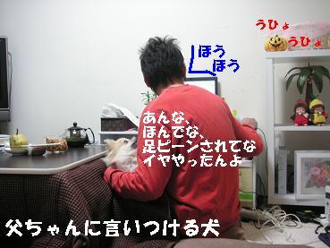c0179136_22521132.jpg