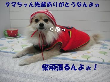 c0179136_22105536.jpg