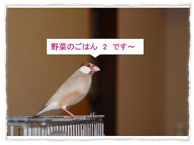 a0019545_182032.jpg