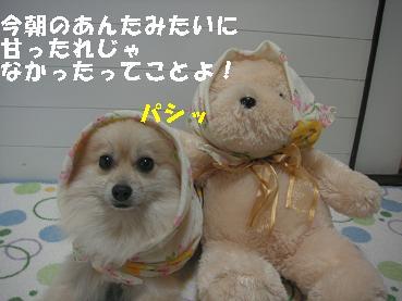c0179136_21323520.jpg