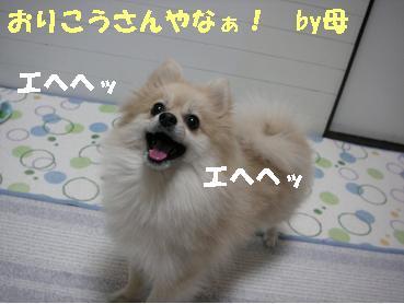 c0179136_22341394.jpg