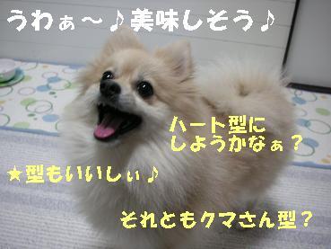 c0179136_22344148.jpg
