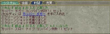 c0152860_1573650.jpg
