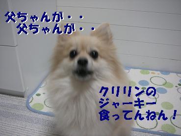 c0179136_23292683.jpg