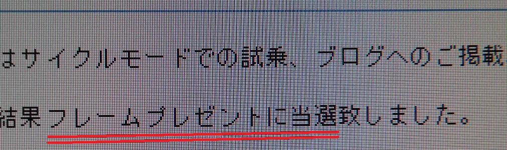 e0015108_2324962.jpg