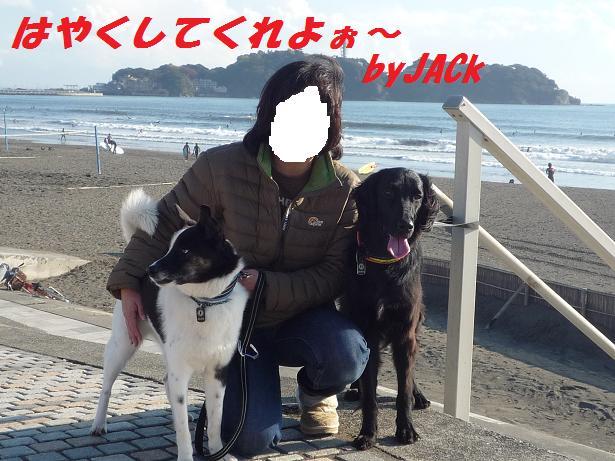 a0104464_19105067.jpg