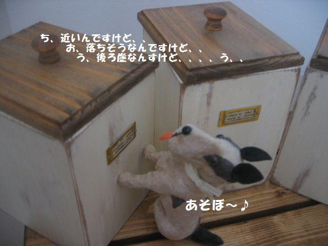 c0152074_1910134.jpg