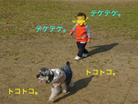 c0177261_174224.jpg