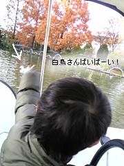 c0029744_1733989.jpg