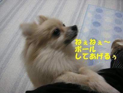 c0179136_522337.jpg