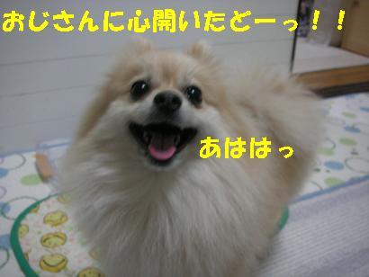 c0179136_22222185.jpg