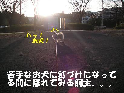 c0179136_2359631.jpg