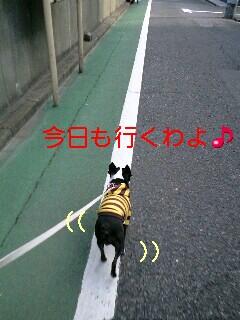c0110945_1610314.jpg