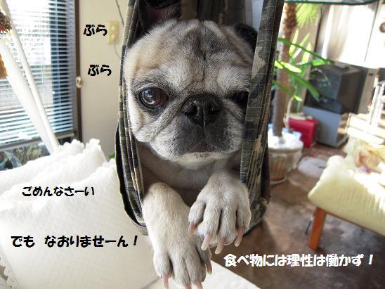 c0139488_15301265.jpg