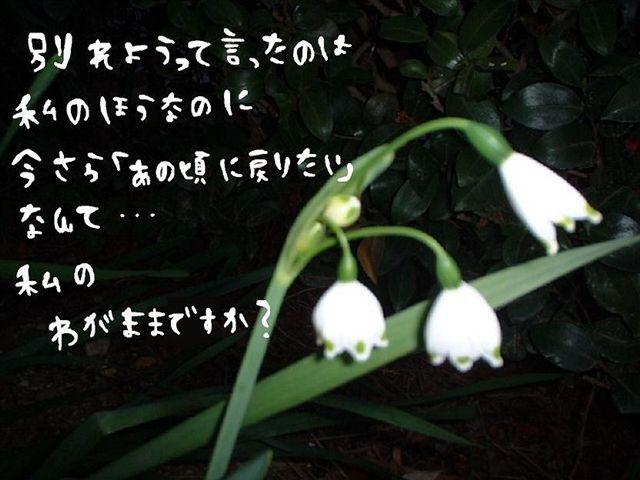 c0136612_17543741.jpg