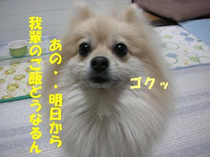 c0179136_2122440.jpg