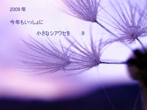 a0013879_23482755.jpg