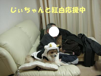 c0179136_311155.jpg
