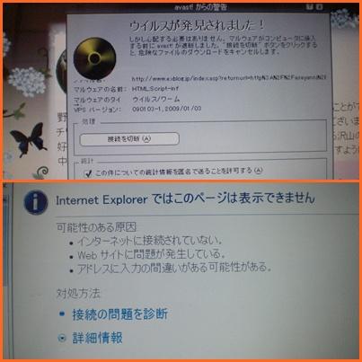 e0085772_1594154.jpg