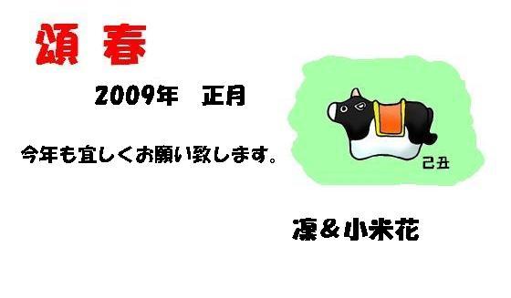 e0023790_2194950.jpg