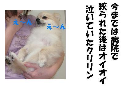 c0179136_042414.jpg