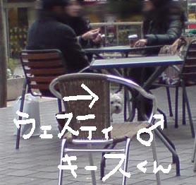 a0100675_19455263.jpg