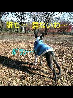 c0110945_2184360.jpg