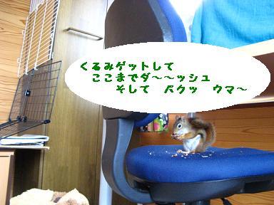 c0182258_0291375.jpg
