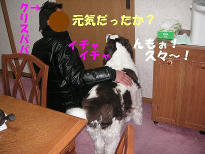 c0179136_241869.jpg