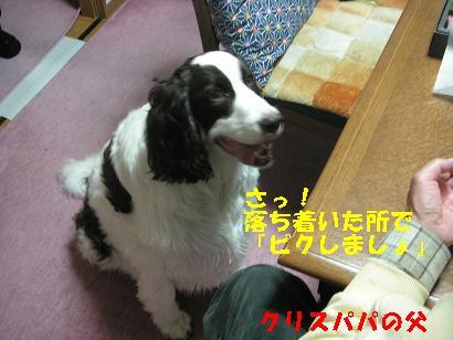 c0179136_243049.jpg