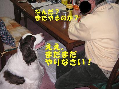 c0179136_25592.jpg