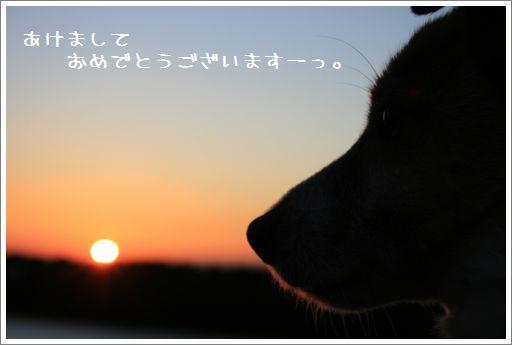 c0119633_20135945.jpg