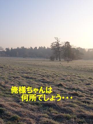e0076052_1944057.jpg
