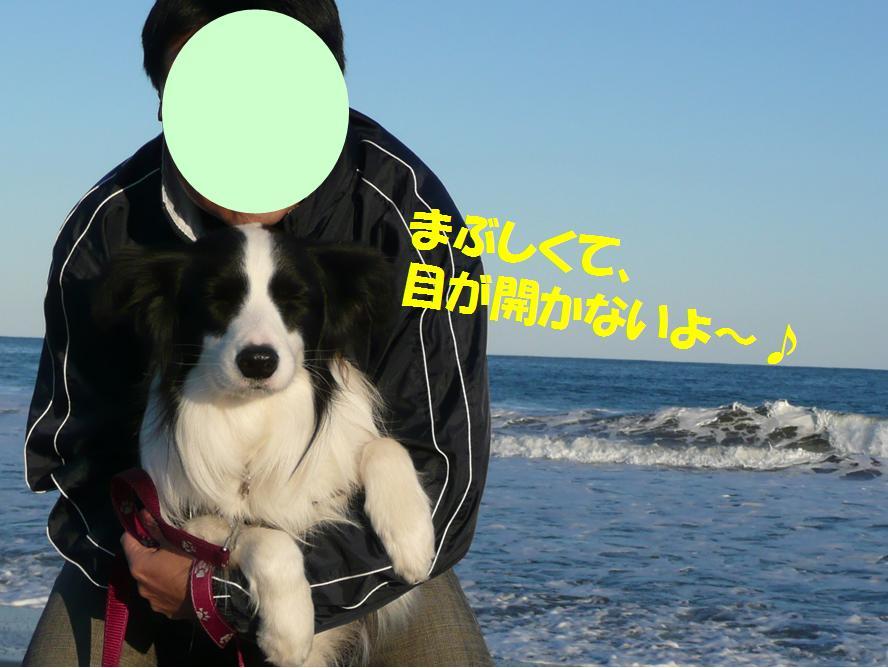 c0147241_2245727.jpg