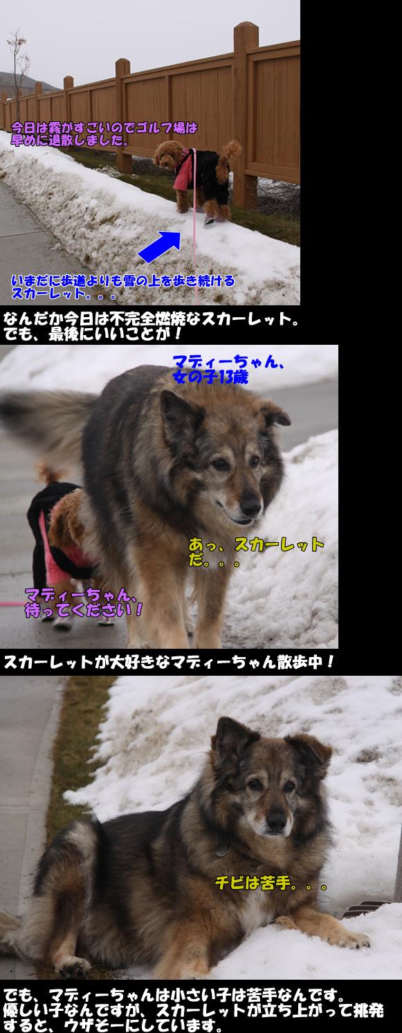 c0164491_930660.jpg