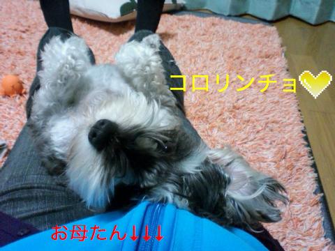 c0177261_0202051.jpg