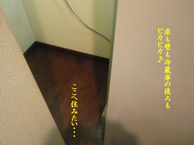 e0094407_2121977.jpg