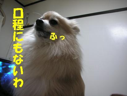 c0179136_3175711.jpg