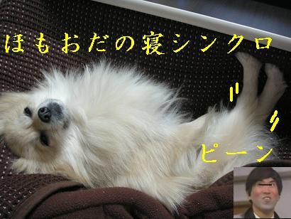 c0179136_259246.jpg