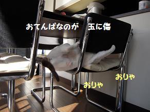 c0139488_21473435.jpg