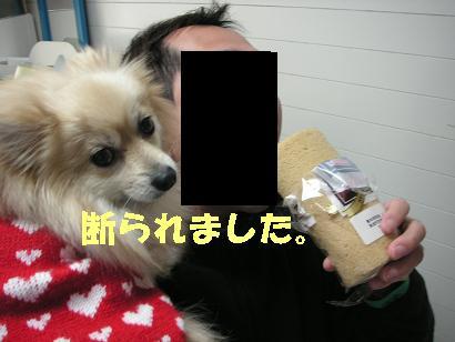 c0179136_3123949.jpg