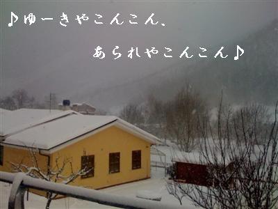 c0195250_19392998.jpg