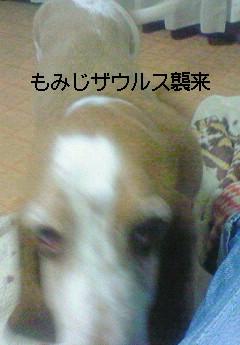 e0117138_19245082.jpg